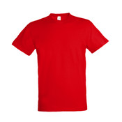 Regent T-Shirt (Standard Weight Cotton)